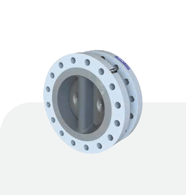 Supplier Goodwin Check Valve Flanged Type